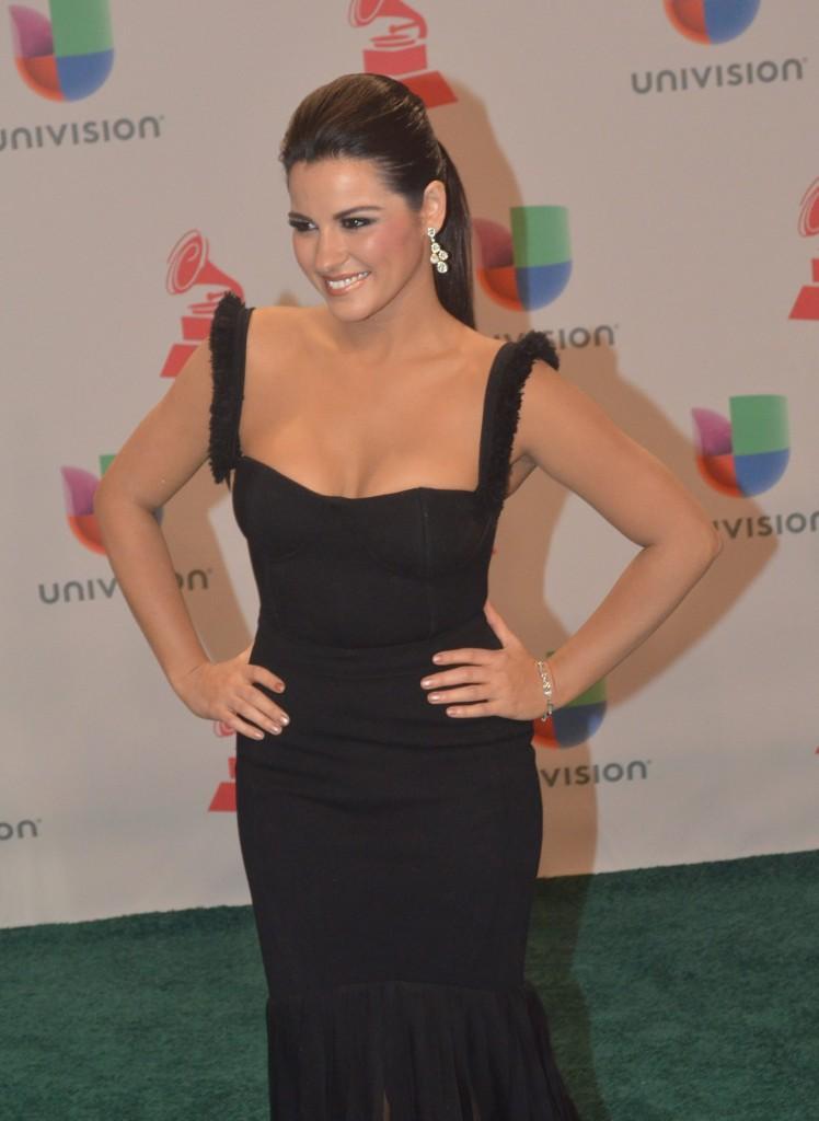 41120243. Las Vegas.- La actriz, Maite Perroni, durante la alfombra verde de los Grammy Latino 2014. NOTIMEX/FOTO/JUAN COSME/COR/ACE/