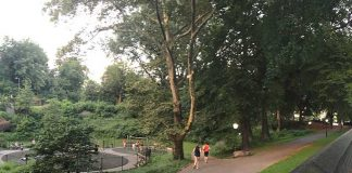 Corriendo en el Central Park